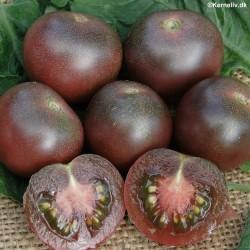 Cherry Tomato 'Black Cherry'