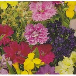 Flower Mix 'Fragrant flowers'
