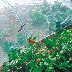 Protective insect netting
