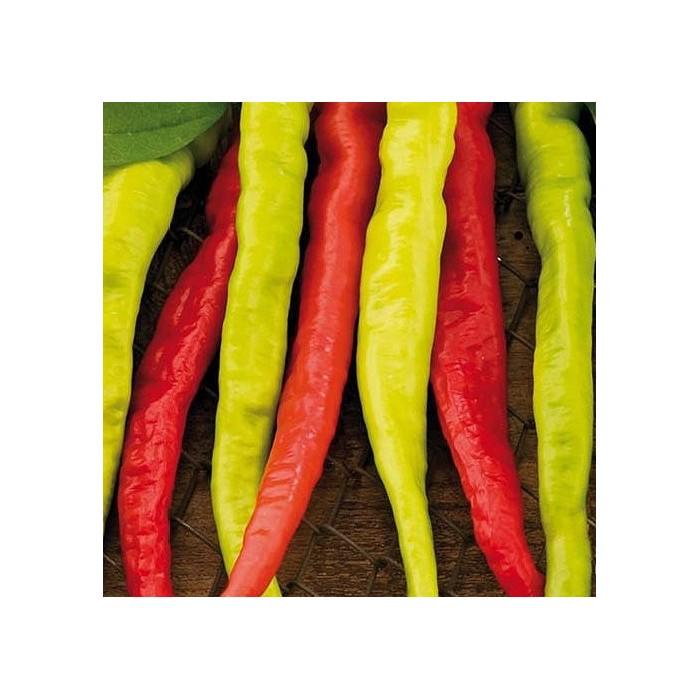 Snack peber 'Lombardo'