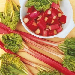 Rhubarb 'Lider'