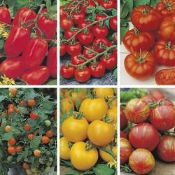 Tomatblanding