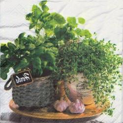 Servietter - Flavor of herbs