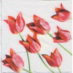 Paper Napkins - Red tulips