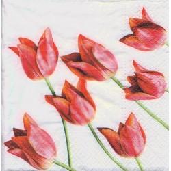 Servietter - Red tulips