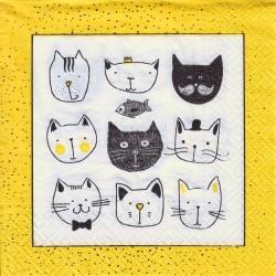 Paper Napkins - Funny cats