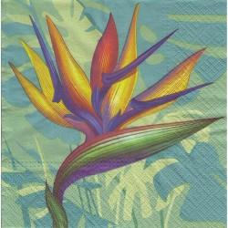 Paper Napkins - Strelitzia
