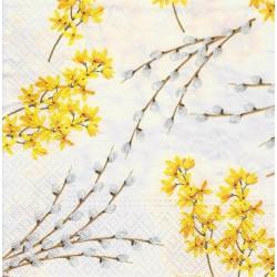 Tagetes patula nana 'Naughty marietta', French Marigold