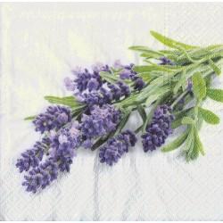 Servietter - Lavender Bunch
