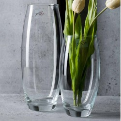Glass Vase - Amaryllis