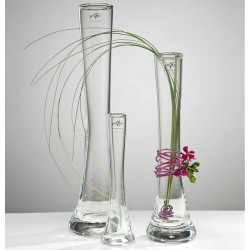 Glass Vase - Solifleur