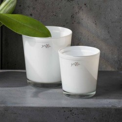 Flowerpot - Orchid, White