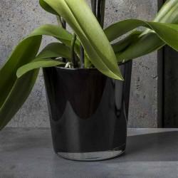 Flowerpot - Orchid, Black