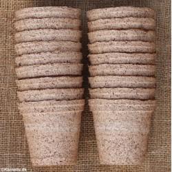 Growing pots, 8 cm, 48 pcs