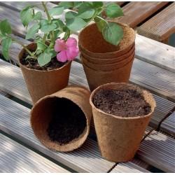 Growing pots, 6 cm, 96 pcs