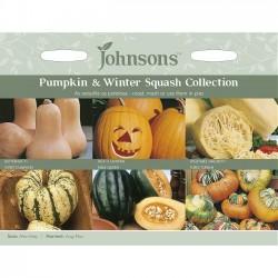 Pumpkin and winter squash...
