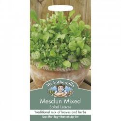 Salatblanding 'Mesclun'