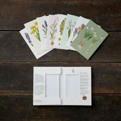 Greeting Cards - Spring...