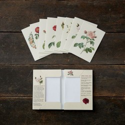 Greeting Cards - Old roses,...