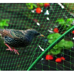 Bird Netting (4x5M)