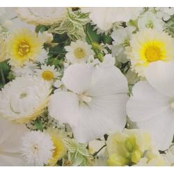 Blomsterblanding - Hvid